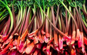 rhubarb-300x192